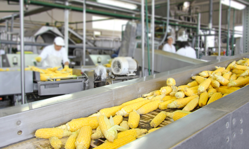 What is the Food Safety Modernization Act (FSMA)?